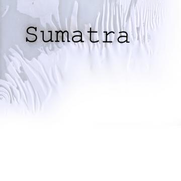 Sumatra Logo